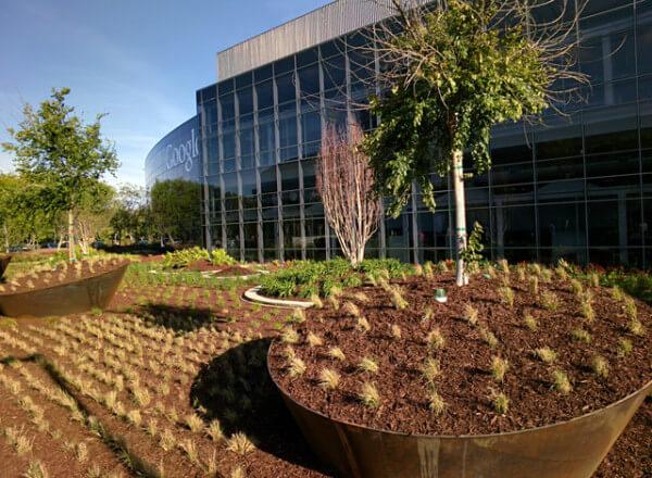google-landscaping-1400068277
