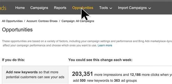 Bing Ads opportunities