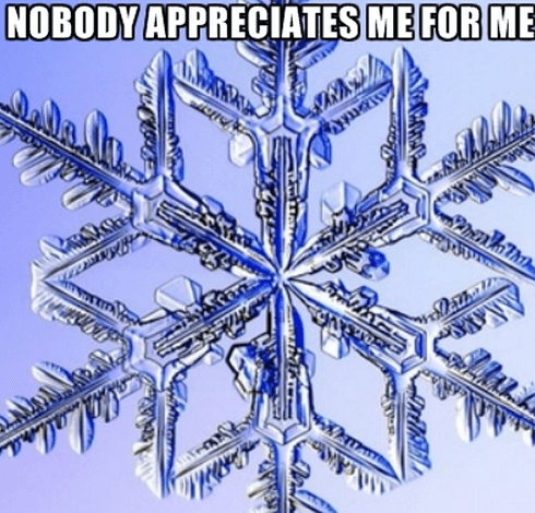 special snowflake meme