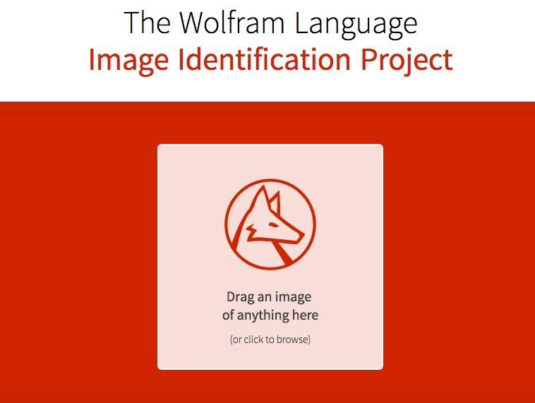 wolfram-alpha-image-identification