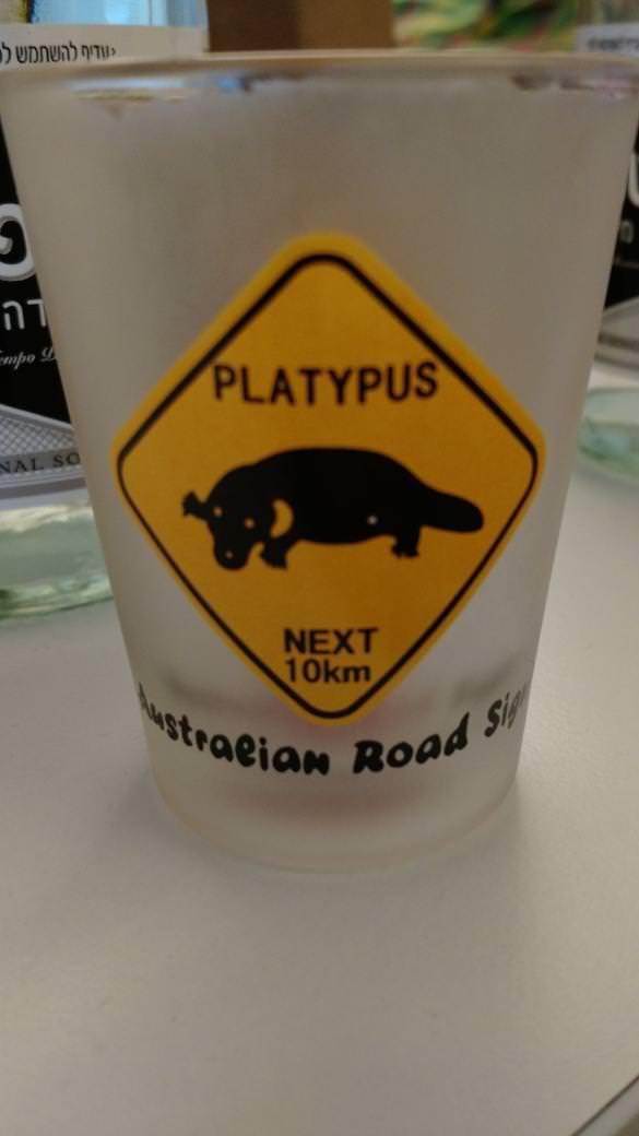 Google Platypus Cup