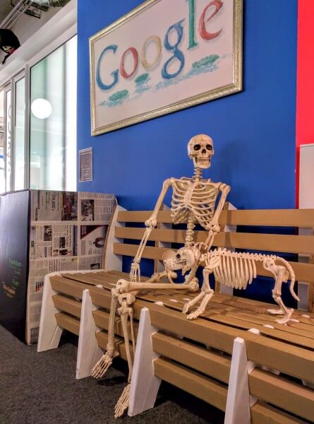 Human & Dog Skeletons At Google