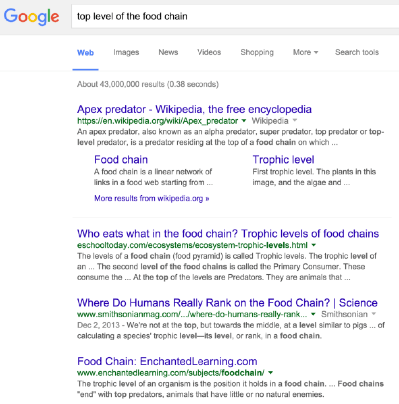 top_level_of_the_food_chain_-_Google_Search