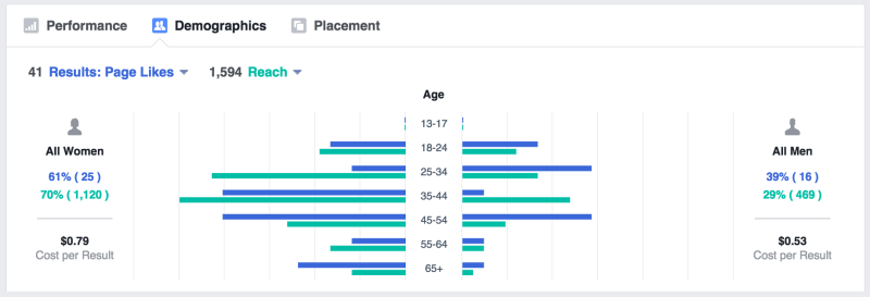 Facebook-demographic-report