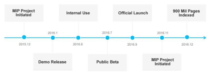 mip project one-year timeline