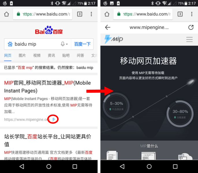 The Flash icon for MIP results on Baidu SERP