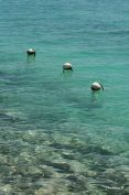 Buoys at the Boat Harbour, Coral Bay, WA