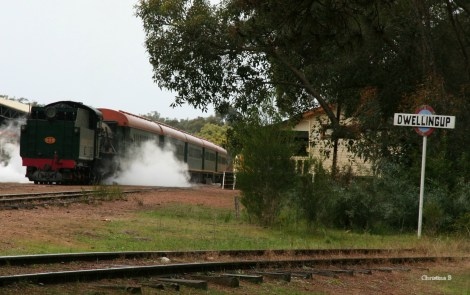 Steam train about to depart on a lunch tour from Dwellingup