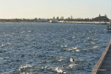 View of a section of the Busselton jetty during the swim leg of Ironman WA