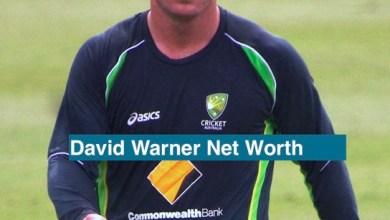 David Warner Net Worth