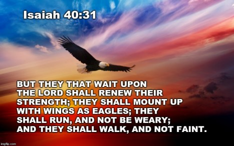 sky eagle Isaiah 40
