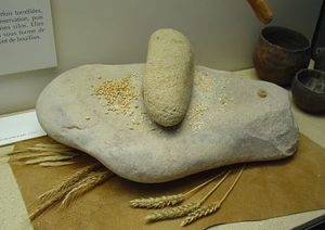 Quern used for grinding wheat by hand for the Jewish Diet