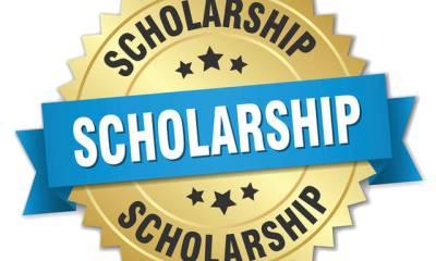 Olusegun Agagu Foundation Full Scholarships Scheme 2021 3