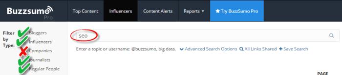 buzzsumo influencer search example