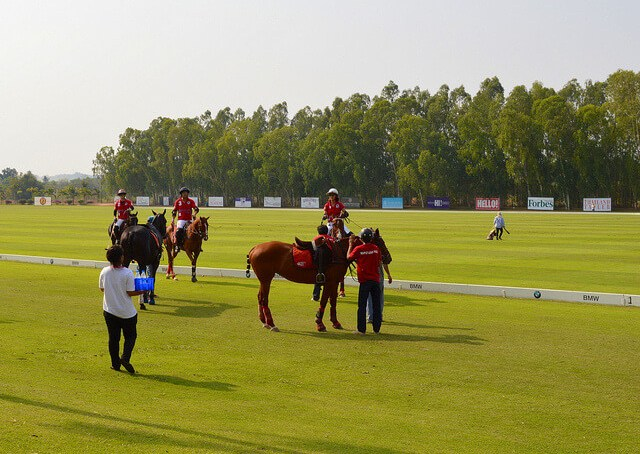 Thai Polo Club