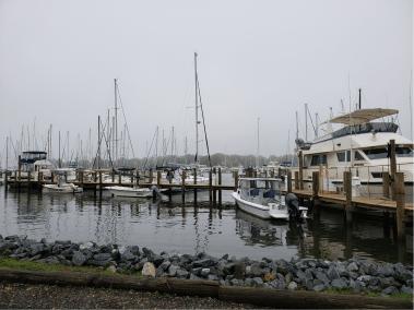 Annapolis Marina - Seashell Marina - Boat Slips Available