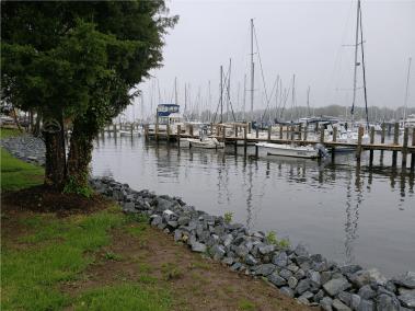 Annapolis Marina - Seashell Marina