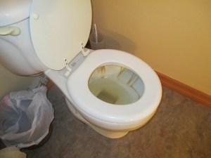 yellow toilet water