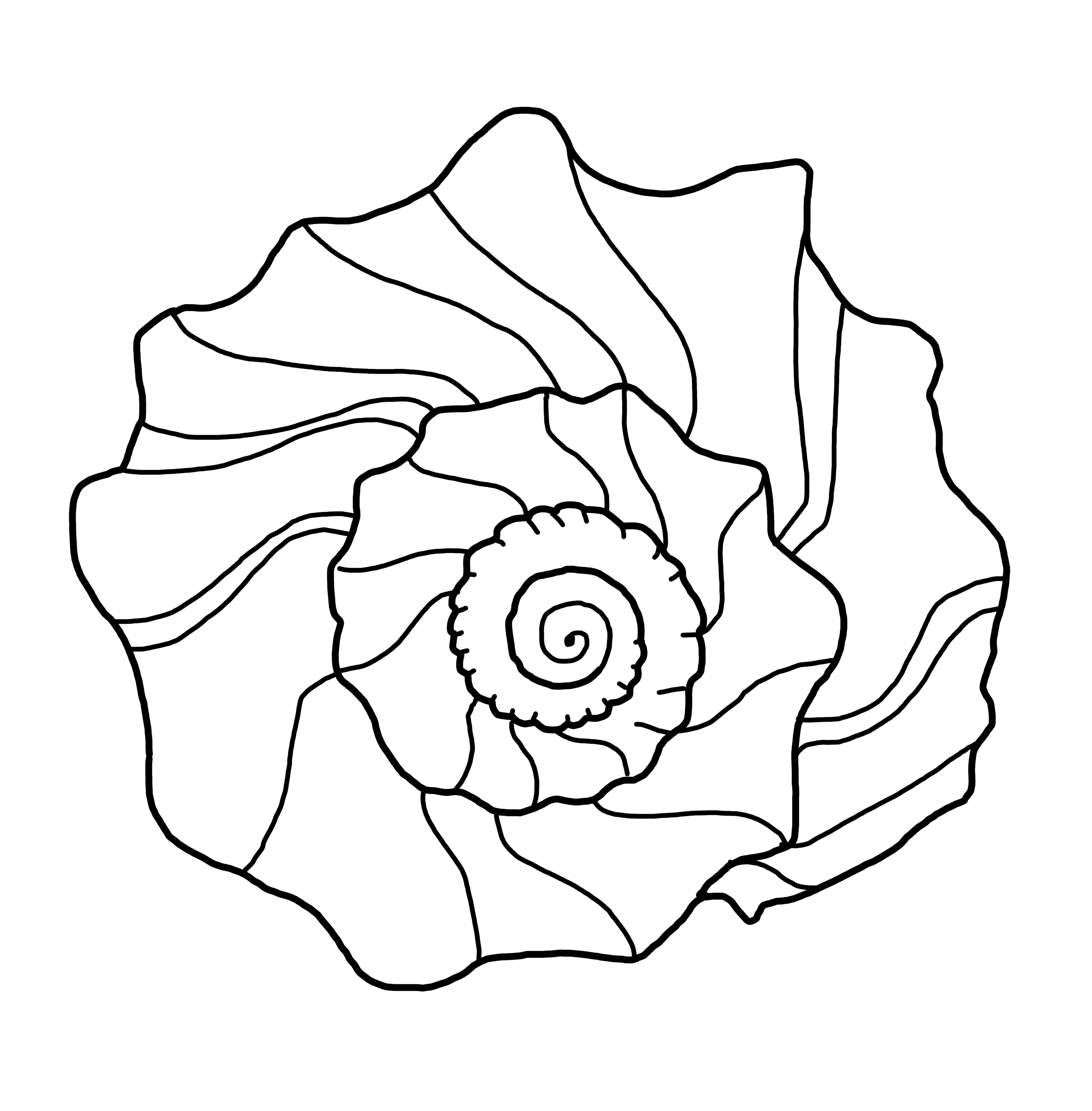 knobbed whelk coloring page