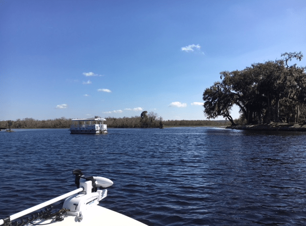 pontoon boat at Hontoon Island