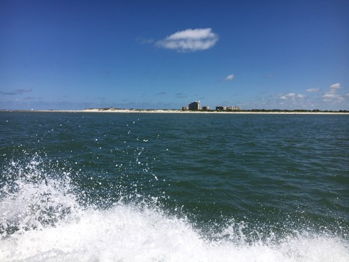 View of Smyrna Dunes Park from our boat