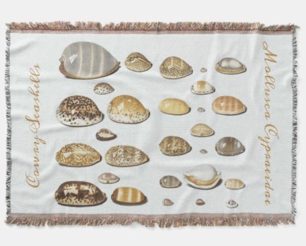 vintage seashell art blanket with cowry shells artwork illustrated beach shells coastal home