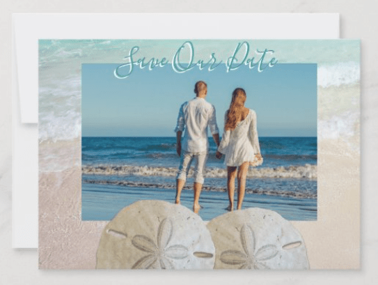 Save the date flat cards beach sand dollars