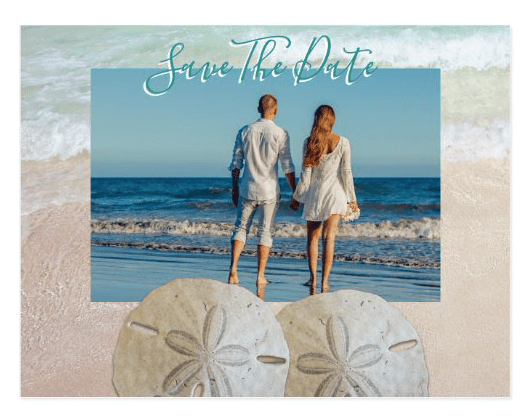 Two sand dollars photo save-the-date postcards