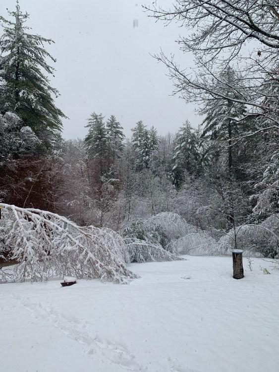 snow snowstorm New Hampshire late season winter