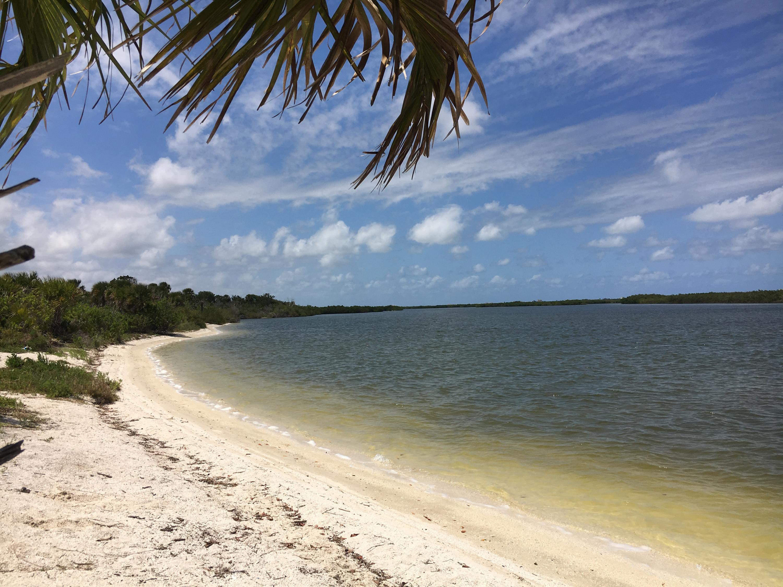 island beach Florida tropical