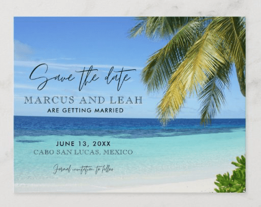 save the date postcards tropical beach palm trees