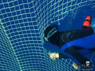 editorial-150304-1-100617-libyan-waters-diver-tuna-net-003-sa3330-400w