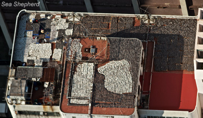 editorial-130304-1-1-Rooftop