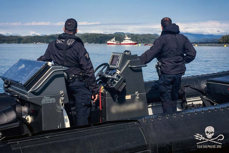 news-170919-1-4-170908-SA-RCMP-keeps-watch-as-Victoria-Viking-arrives-Midsummer-to-unload-Herring-into-pens-002-8623-Edit-1200w.jpg
