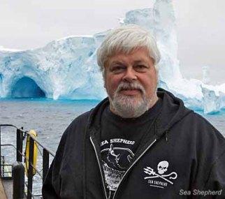 (Photo: Eric Cheng / Sea Shepherd Conservation Society)