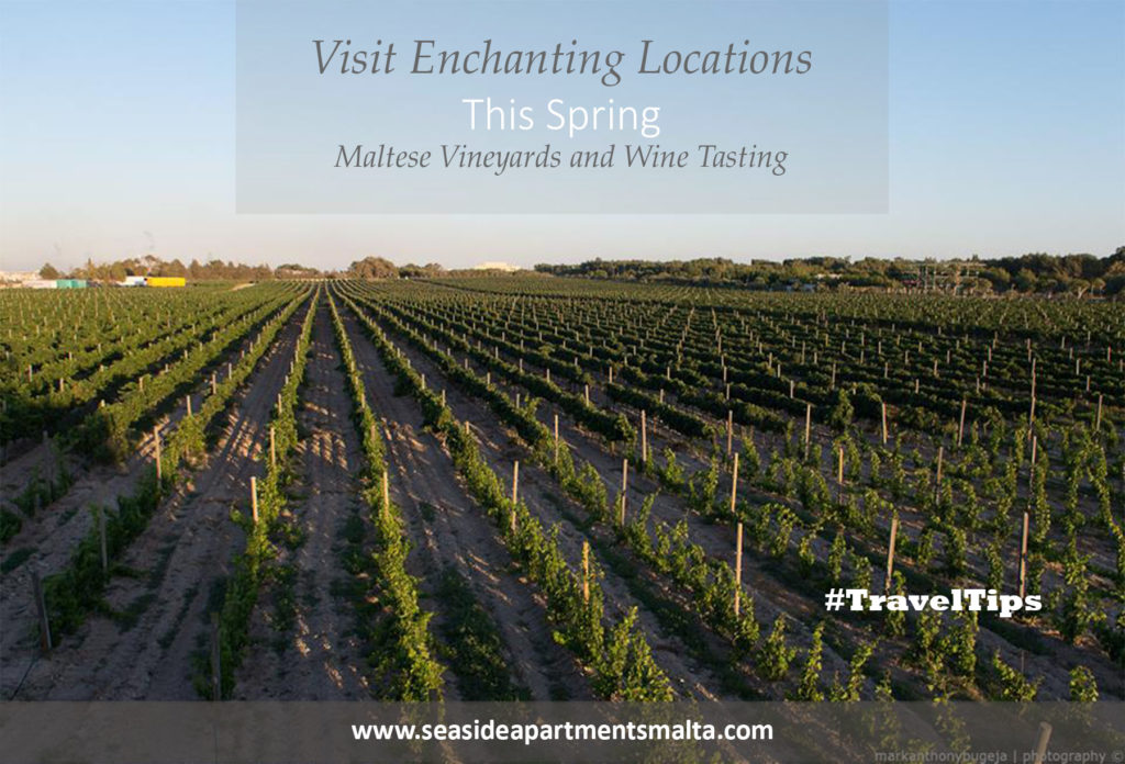Holiday apartments, Meridiana Wine Estate, Travel tips, Sliema Boutique Apartment