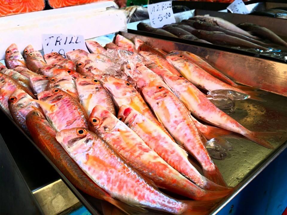 fish display at marsaxlokk
