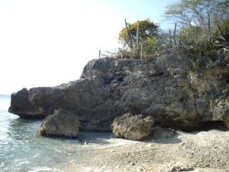 Cas Abou 3 at the beach
