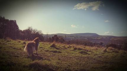 6. Phoebe enhancing Pendle Hill in Lancashire, UK