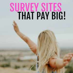 10 Online Survey Sites that Pay Big!
