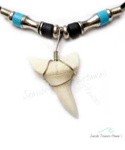 mako shark teeth pendant
