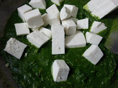 Add paneer cubes for vegetarian palak recipe