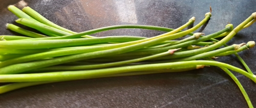 peyajkoli onion stalks for peyaj koli bhaja recipe
