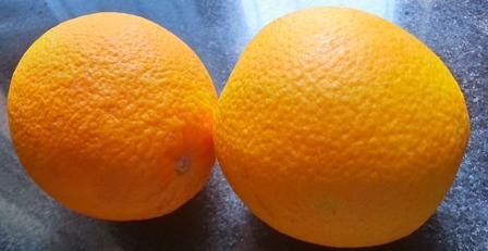 oranges for easy kheer recipe