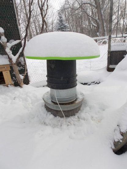 Feb. snow 2013 021