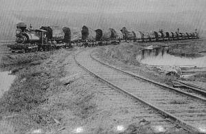 log train