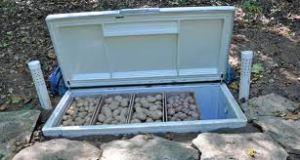 freezer foot cellar