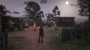 Red Dead Redemption 2 (13)