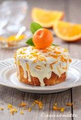 seasonette_orangenkuchen_hoch2