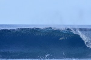 Unlimited surfing in warm crystal waters of Indian Ocean